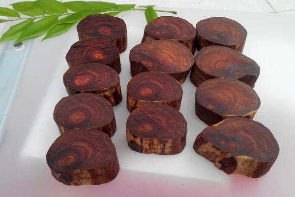gỗ sưa đỏ quảng bình